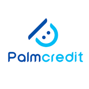 palmcredit app, PALMCREDIT CUSTOMER EXPERIENCES